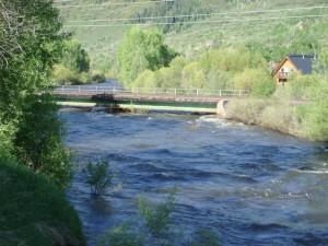 Yampa River in June