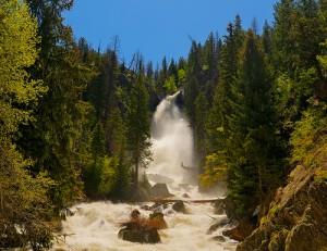 Fish Creek Falls In Spring