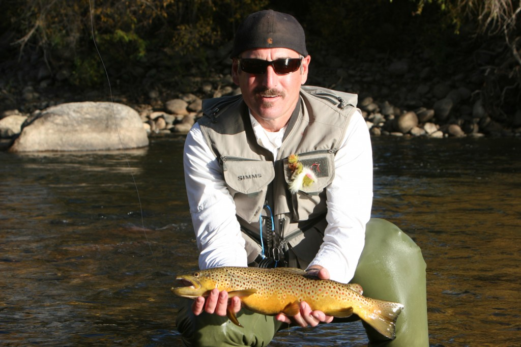 Brown Trout in Steamboat Springs