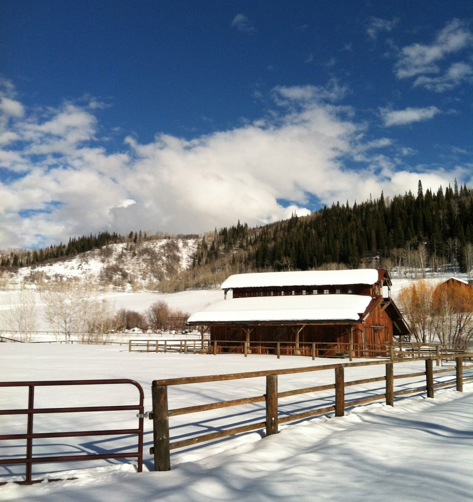 Ranch for sale in Steamboat Springs