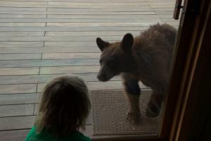 Cub meets cub! My son Finn and cub, May 2013