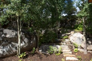 Meandering pathway nestled among boulders and aspens.