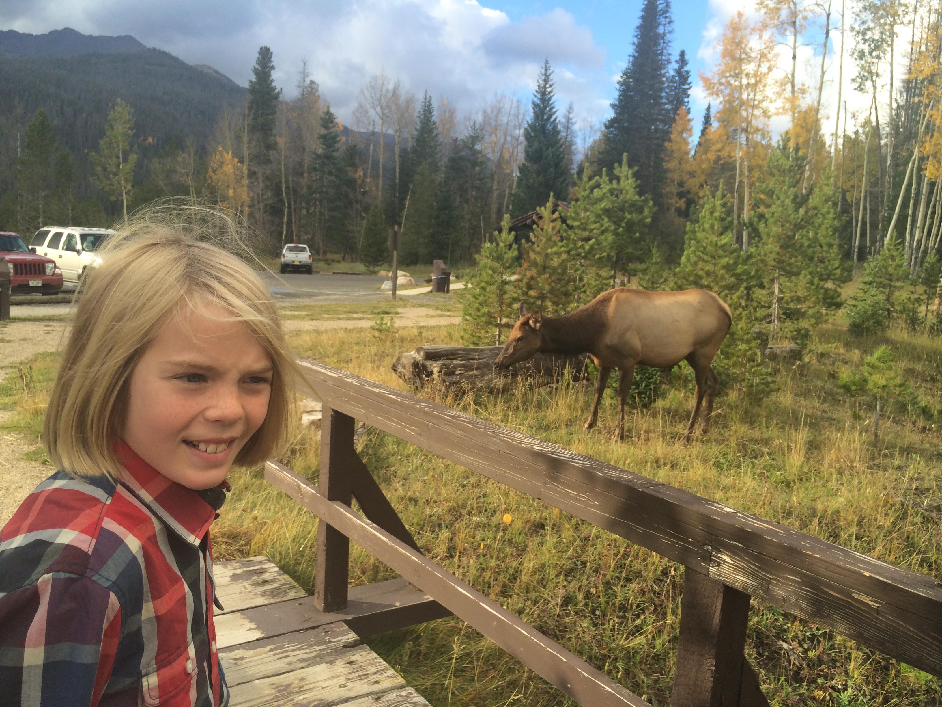 My boy and an elk at Rocky Mountain National Park, #everykidinapark