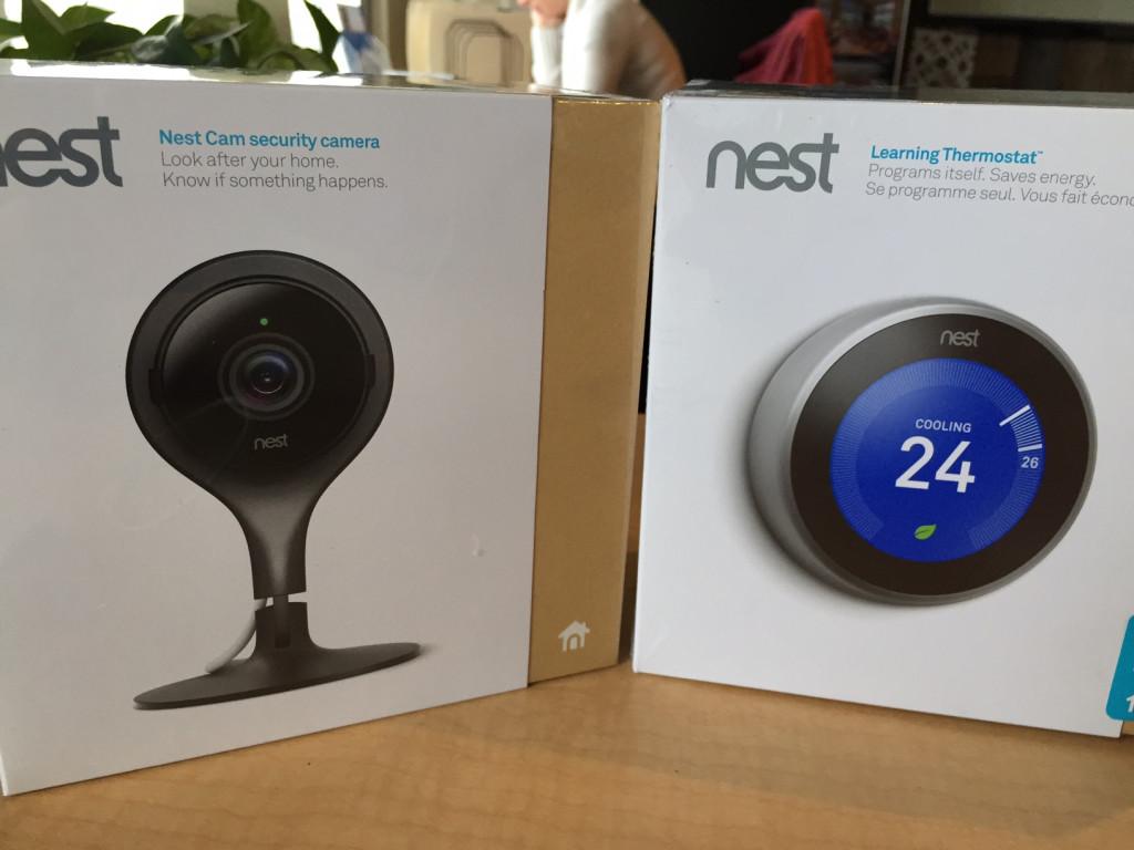 Nest Photo